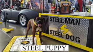 steelpuppy